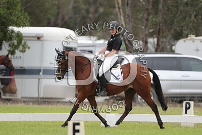 PCV State Dressage and Showjumping Championships 2021